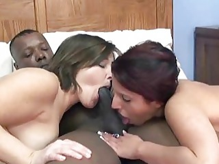 desperate lavender into a triple couples with